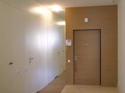 Panele ścienne oraz okładzina drzwi fornir modyfikowany.